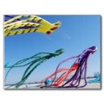 octopi_kites_postcards-r1d77a62b4fde4654a1b59c2ce43a9ecb_vgb